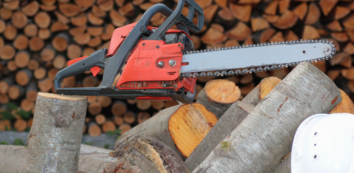 Chainsaws : Maintenance Basic Felling - 200mm & Cross Cutting